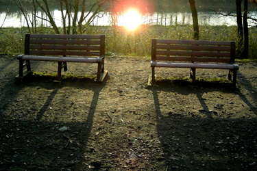 100312_benches.jpg