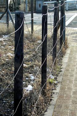 100317_wires.jpg
