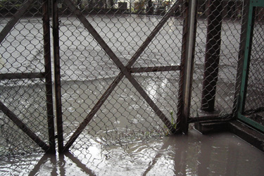100523_rainy_ground.jpg