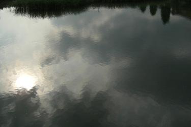 100529_pond.jpg