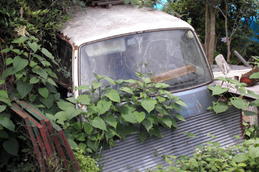 100627_car.jpg