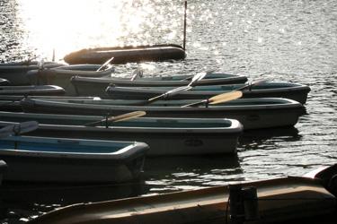 100808_boats.jpg
