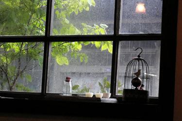 100811_sudden_heavy_rain.jpg