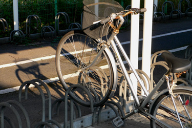 100825_bicycle.jpg