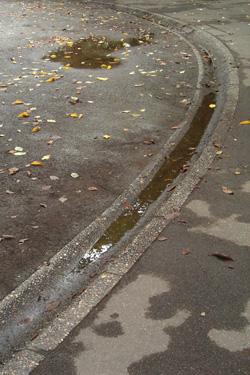 100923_after_rain.jpg