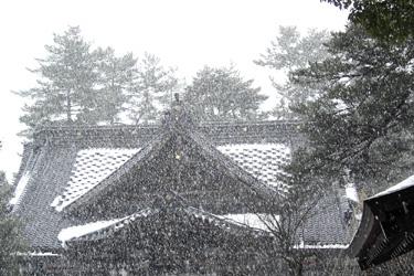 110113_shrine.jpg