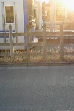 110127_trains.jpg