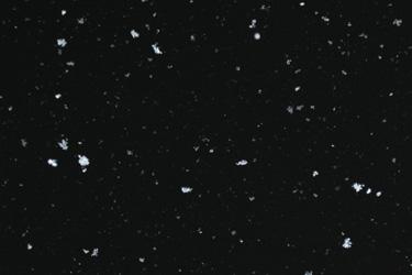110214_snow.jpg