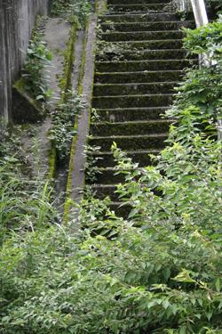 110723_steps.jpg