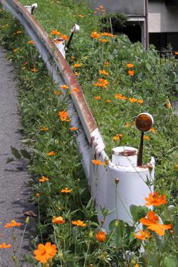 110816_natural_planter.jpg