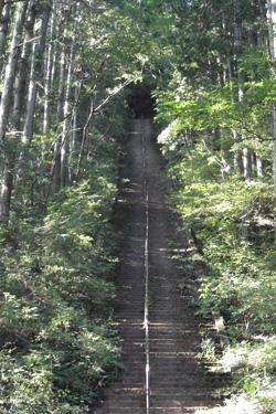 110914_long_steps.jpg