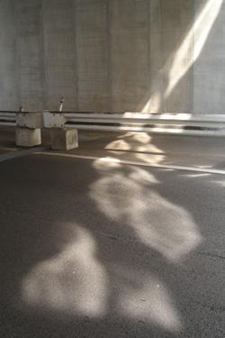 110928_sunlight.jpg