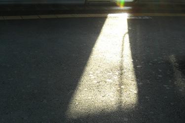 111109_sunlight.jpg