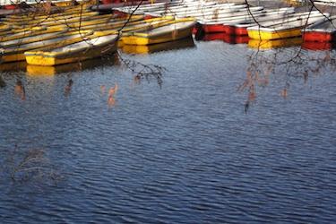 111128_boats.jpg