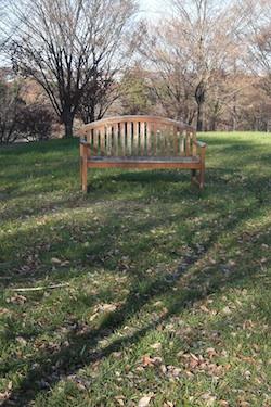 111212_bench.jpg