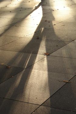 111222_shadow.jpg