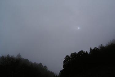 120203_foggy_morning.jpg