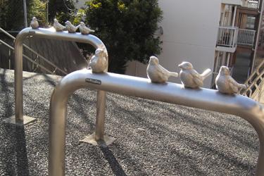 120204_birds.jpg
