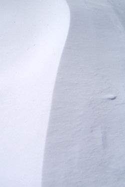 120315_snow.jpg