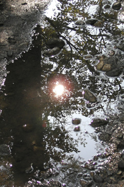 120523_puddle.jpg