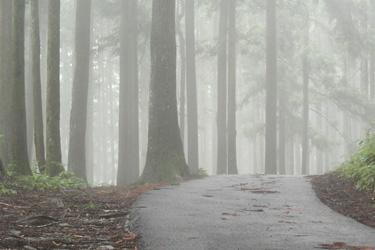 120607_road.jpg