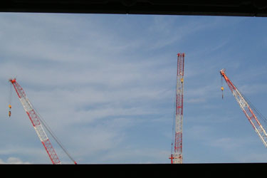 120609_cranes.jpg