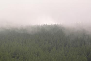 120615_foggy_mountain.jpg