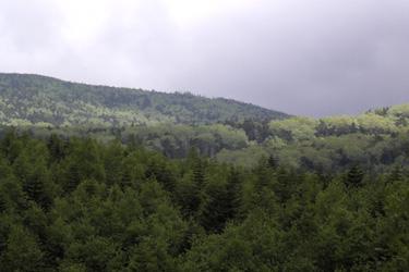 120616_green_mountain.jpg