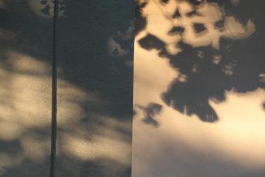 120719_shadow.jpg