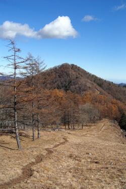 121112_road_to_peak.jpg