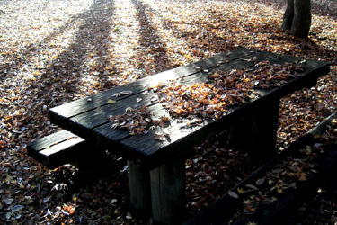 121204_table.jpg