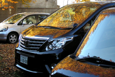 121208_autumn_parking.jpg