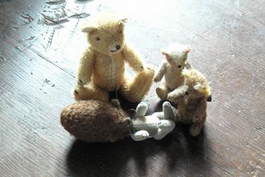 121211_bears.jpg