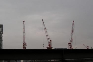 121217_cranes.jpg