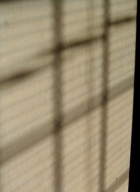 121218_blind.jpg