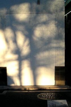 121223_shadow.jpg