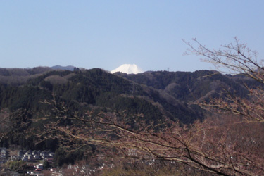130316_fuji.jpg
