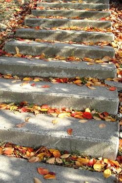 131204_steps.jpg