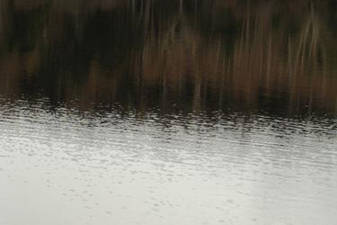 131216_lake.jpg