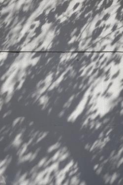 140326_shadow.jpg