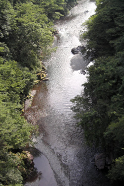 140615_river.jpg