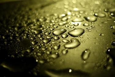 140810_rain_drops.jpg