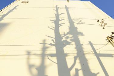 141203_shadows.jpg