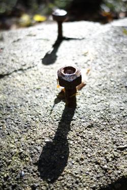 141205_iron_mushroom.jpg