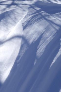 141219_snow_art.jpg