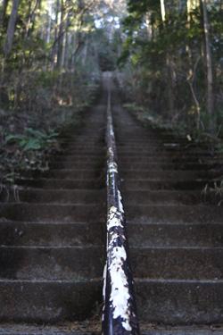 141222_steps.jpg