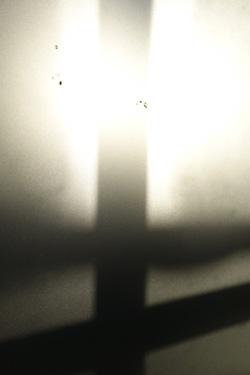 150101_window.jpg