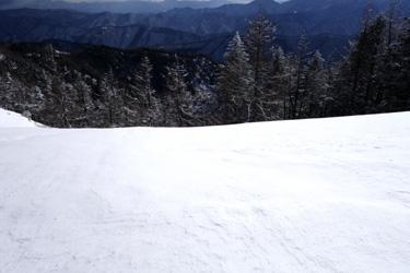 150124_snow_forest.jpg
