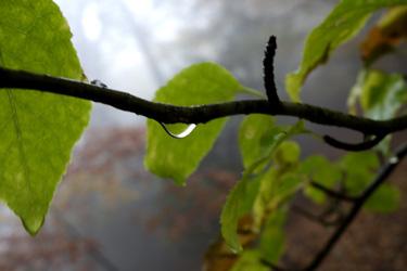 151001_aqua_drop.jpg