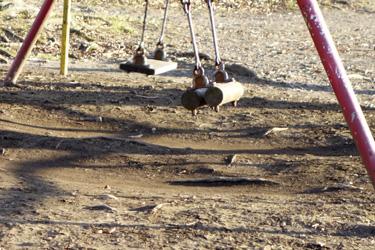 151220_swing.jpg
